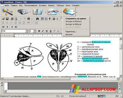 Screenshot CuneiForm Windows XP