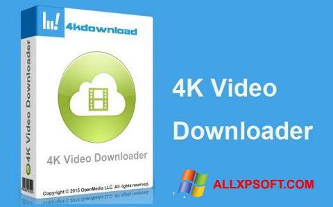 Screenshot 4K Video Downloader Windows XP