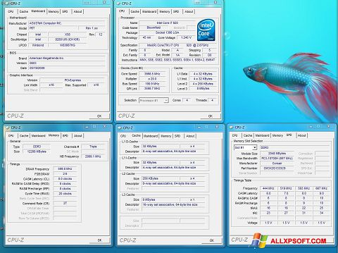 Screenshot CPU-Z Windows XP